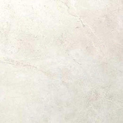 Portobello Marfil 8 X 10 White Tile & Stone
