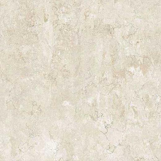 Portobello Marmi 12 X 12 Perlino Bianco Tile & Stone