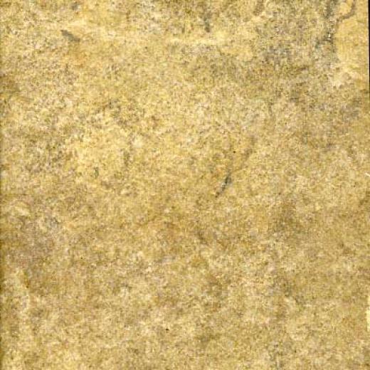 Portobello Pietra Di Toscana 9 X 18 Terra Tile & Stone