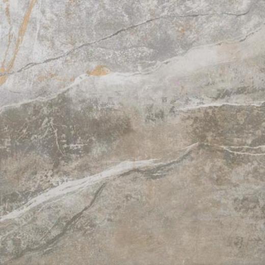Ragno Vatican Gallery 6.5 X 6.5 Terracotta Mevgda66