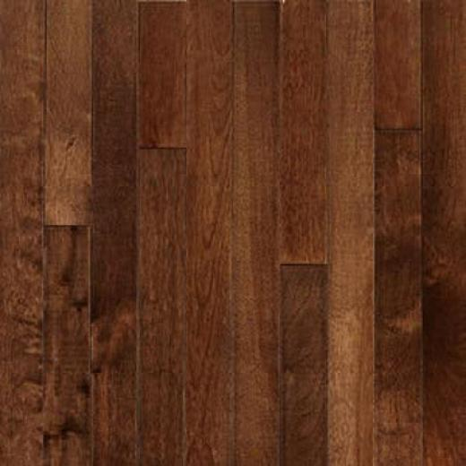 Robbins Urban Exotics Collection Strip Birch 2 1/4 Umber Hardwood Flooring