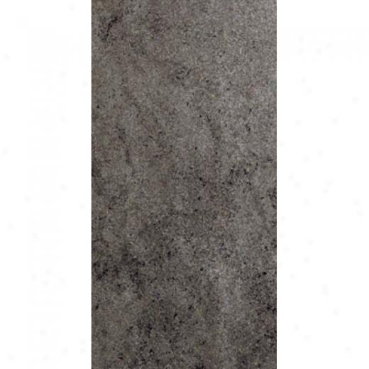 Rock & Rock Packstone 24 X 48 Bambu Tile & Stone