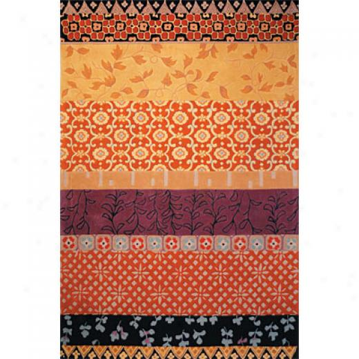 Safavieeh Rodeo Drive 5 X 8 Rd622k Area Rugs