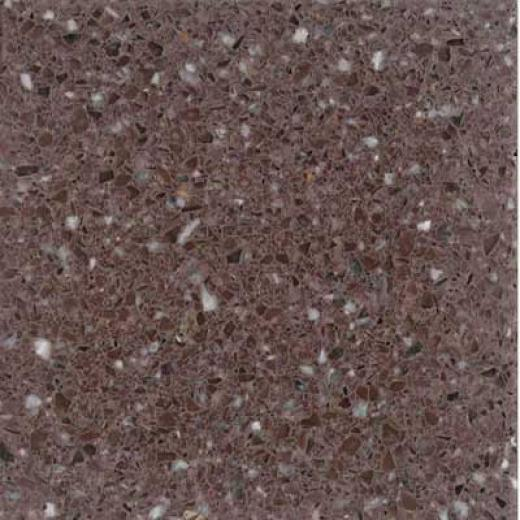 Santw Regina Architectural 16 X 16 (antique) Plum Terrazzo Tile