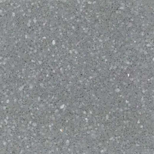 Santa Regina Architectural 16 X 16 (polished) Steel Gray Terrazzo Tile