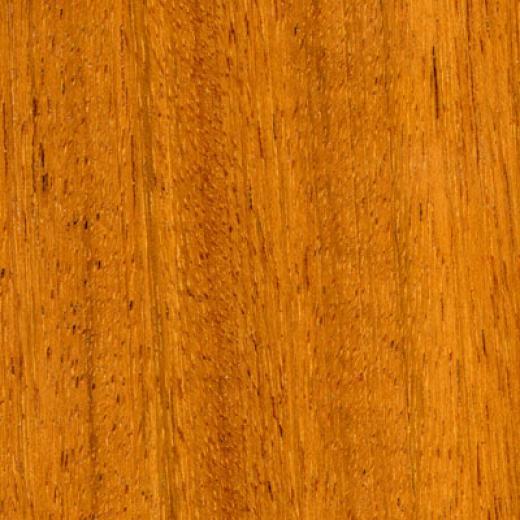 Scandian Woo dFloors Solid Plank 3 1/4 Tigerwood Hardwood Flooring