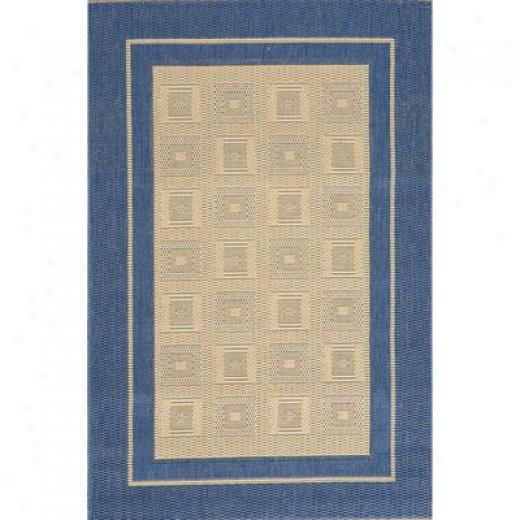 Stepco Patio Rugs 10x12 1309 Cream Blue Area Rugs