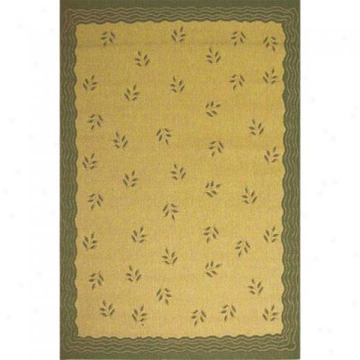Stepco Ptaio Rugs 5 X 8 1302 Cream Terra Area Rugs