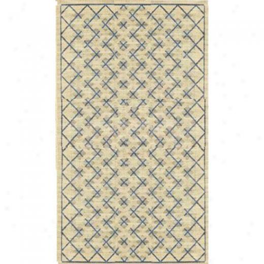Syepco Patio Rugs 8 X 10 724 Cream Blue Area Rugs