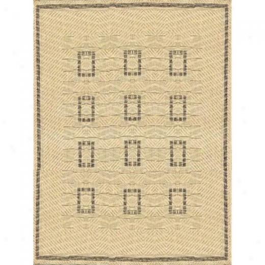 Stepco Patio Rugs 8 X 10 027 Cream Brown Area Ruhs