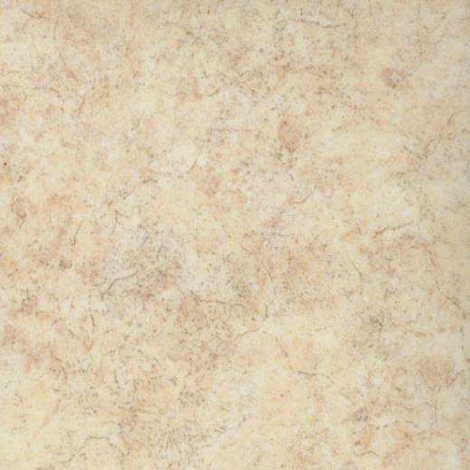 Tarkett 08000 Series 08051 Vinyl Flooring
