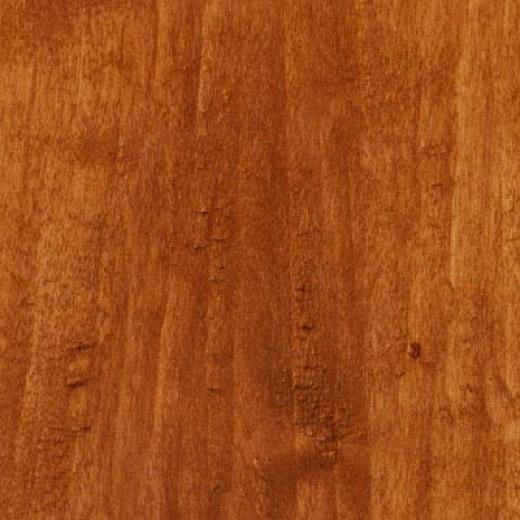 Tarkett Cinque Terre Coasstal Elm Laminate Flooring