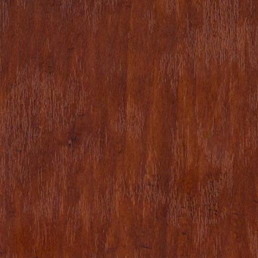 Tarkett Cinque Terre Vineyard Elm Laminate Flooring