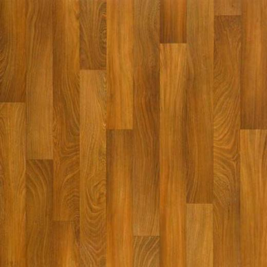 Tarkett Fiher Floors Easy Living - Exotic Elm Cherry Elm Vinyl Flooring