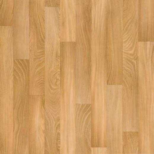 Tarkett Infinity - American Elm Golden Elm Vinyl Flooring