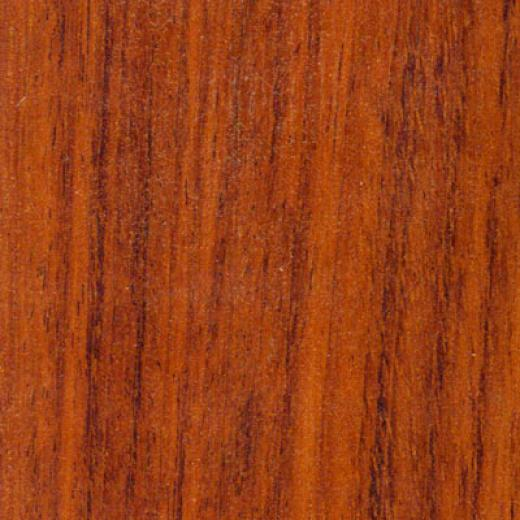 Tarkett Occasions Plus Modern Jatoba Laminate Flooring