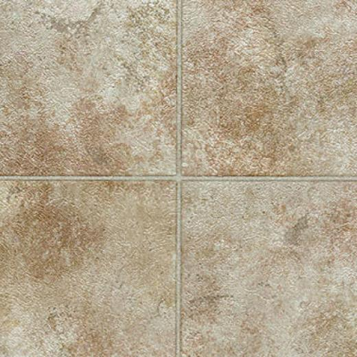 Tarkett Preference Plus Nt - Bayhill 12 Butternut Birch Vinyl Flooring