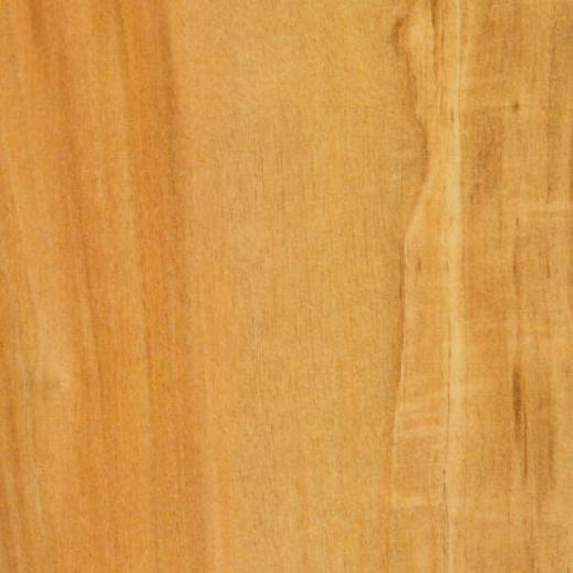 Tarkett Reflectons Harbor Maple Lc8r17401