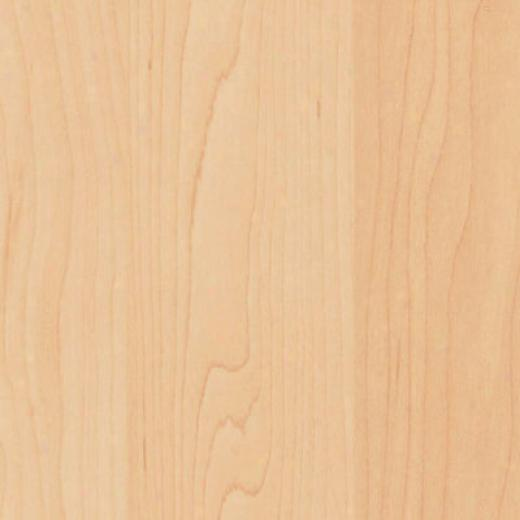 Tarkett Scennic Natural Maple Laminate Flooring