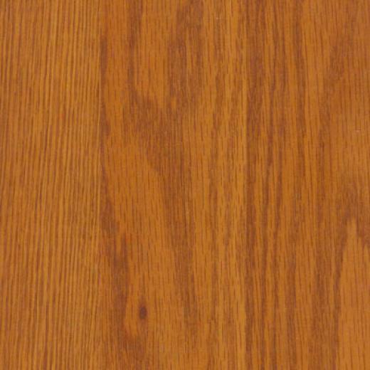 Tarkett Scenic Plus Buxkeye Oak Wheat Lsminate Flooring