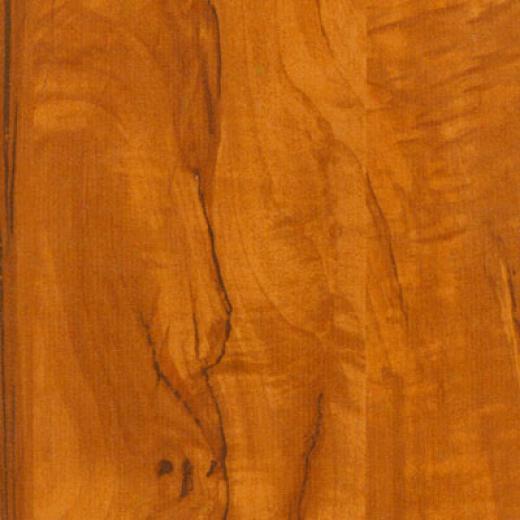 Tarkett Sccenic Plus Flamr Sycamore Laminate Flooring