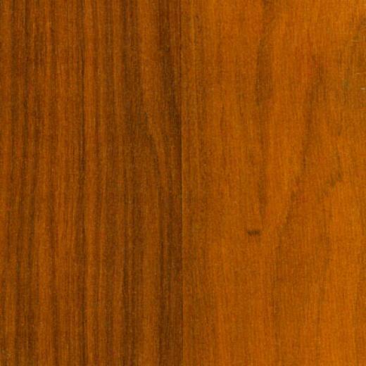 Tarkett Scenic Plus Honey Cherry Laminate Flooring