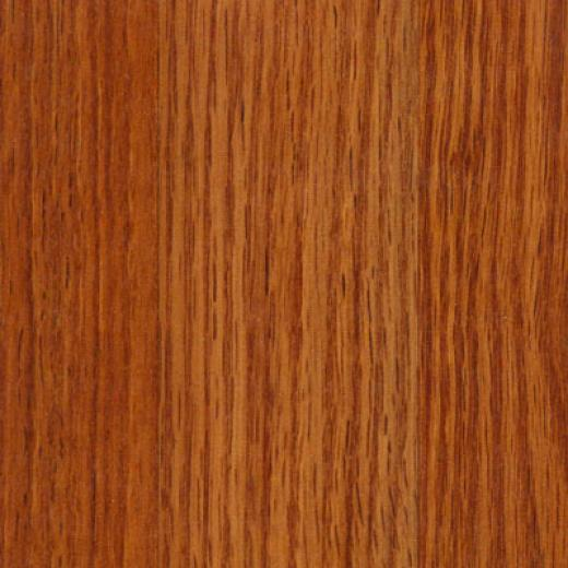 Tarkett Solutions Elegant Red Oak Lc8s15504