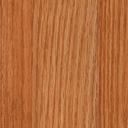 Tarkett Solutions Mission Oak Laminate Flooring
