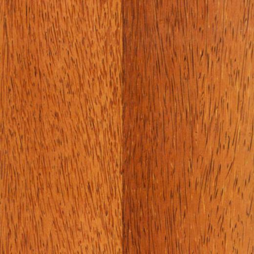 Tarkett Tropical Pacfic Cocnout Laminate Flooring