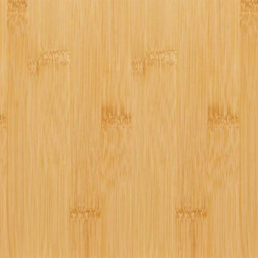 Teragren Signaturr Naturals Vertical Natural Bamboo Flooring