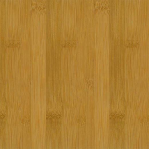 Teragren Spectrum Flat Caramelized Bamboo Flooting