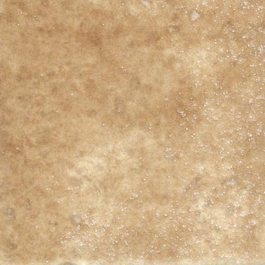 Tesoro Intinta Nocciloa Tile & Stone