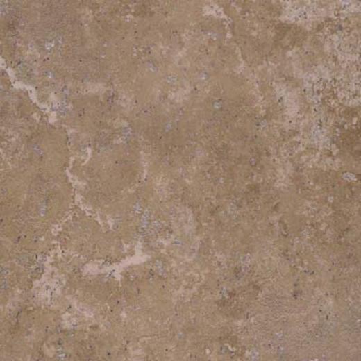 Tesoro Maximus 13 X 13 Graccus Noce Tile & Stone