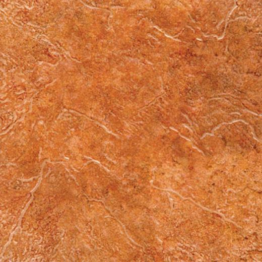 Tesoro Rocky Mountain 18 X 18 Cotto Tile & Stone