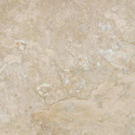 Tesoro Vecchio 13 X 13 Savia Taupe Tile & Stone