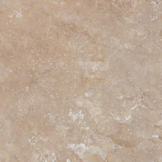 Tesoro Vecchio 9 X 13 Noce Tile & Stone