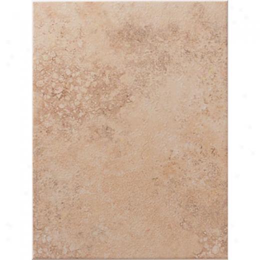 United States Ceramic Tile Tuscany 10 X 13 Desert Tile & Stone