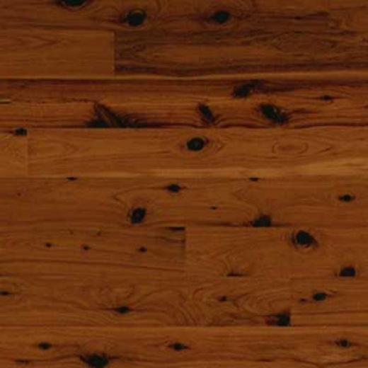 Wood Flooring International World Woods Collection 3 Bermuda Cypress Hardwood Flooring
