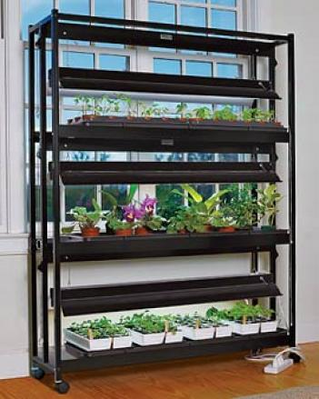 3-tier Sunlite® Garden, Factory Second