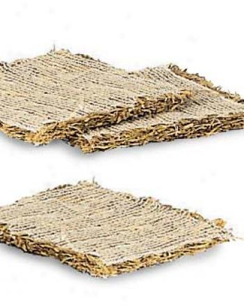 Barley Pads, Set Of 3