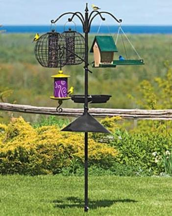 Birdfeeding Place With Patio Base