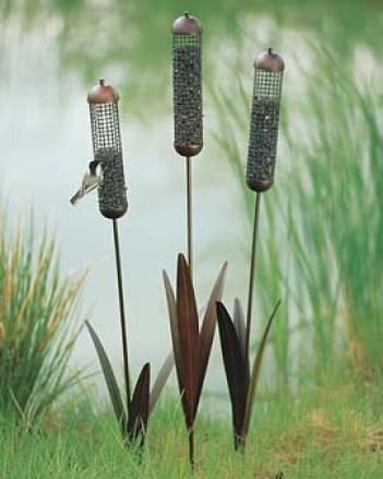 Cattail Feeders, Sharpen Of 3