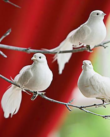 Clip-on Dove Ornnaments, Set Of 3