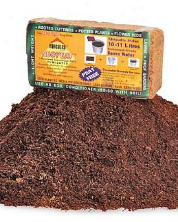 Coir Bricks, Pack Of 10
