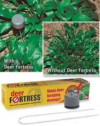 Deer Fortification, Set Of 6
