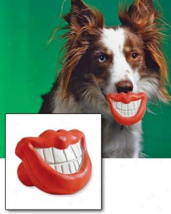 Dog Grin