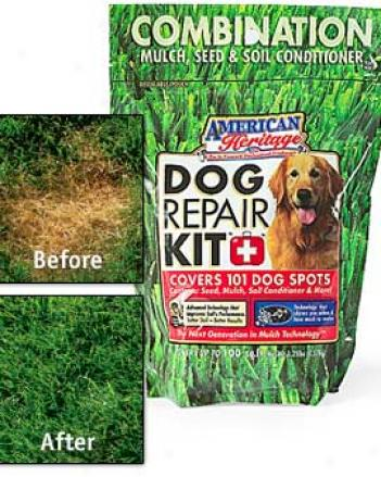 Dog Repair Grass Kit™