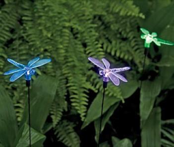 Dragonfly Solar Lights, Set Of 3