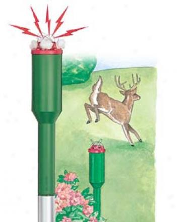 Electronic Deer Trainers, Set Of 3