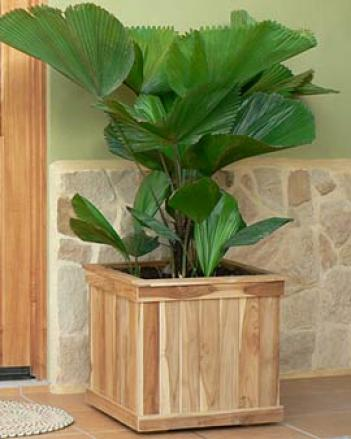 Estate Teak Planter, Square 20